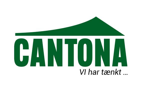 Web Cantona4